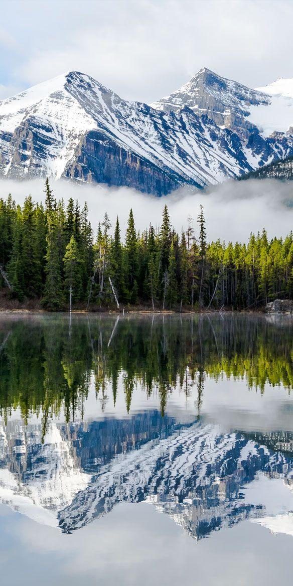 Rocky mountain reflection at Herbert lake in Banff Alberta.
