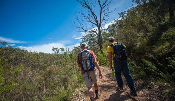Wolwekrans offers a range of outdoor activities for the whole family incl. hiking trails,untamed game viewing,MTB cycle routes,hammocks,fresh water fishing.