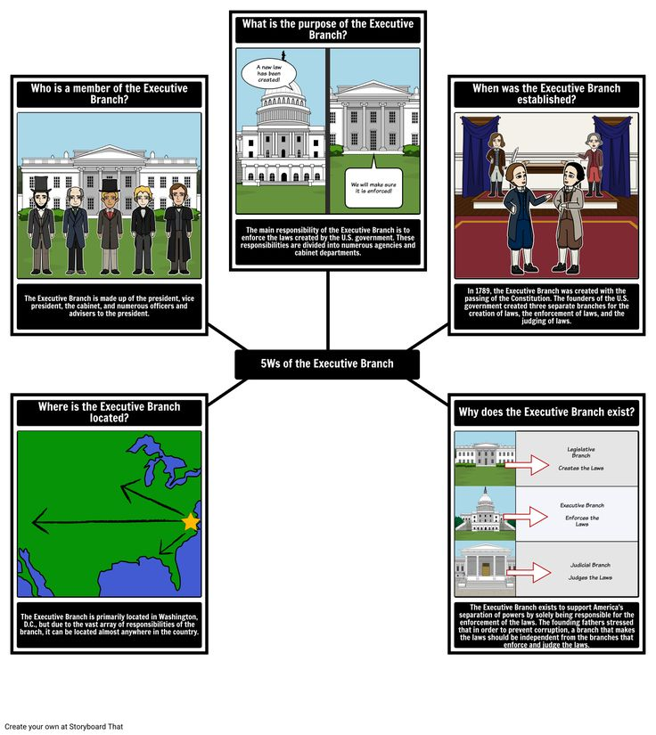 21 best The Executive Branch images on Pinterest Maps - what is storyboard