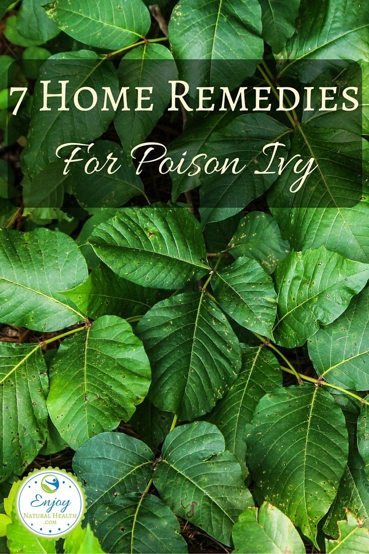 Wonder how to treat poison ivy naturally? Try one or more of these 7 home remedies. We used a combination of #5 and # 6 for my daughter with excellent results!