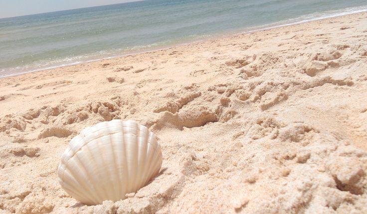 Sun, sand, waves