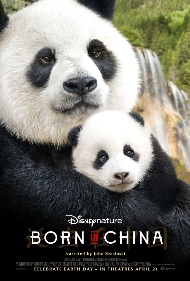 """Narrated by John Krasinski (""""13 Hours: The Secret Soldiers of Benghazi,"""" NBC's """"The Office,"""" """"Amazon's """"Jack Ryan""""), Disneynature's new True Life Adventure film """"Born In China"""" takes an epic journey into the wilds of China where few people have ever ventured."""