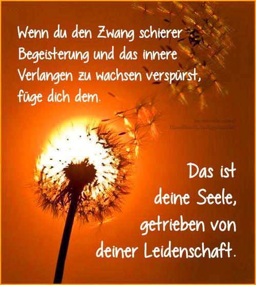 48 best ideas about quotes in german zitate in deutsch - Pablo escobar zitate deutsch ...