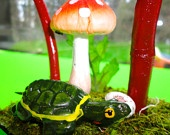 Www.etsy.com/shop/CuckooKits Love our little Thomas Turtle Kit! Just $20!