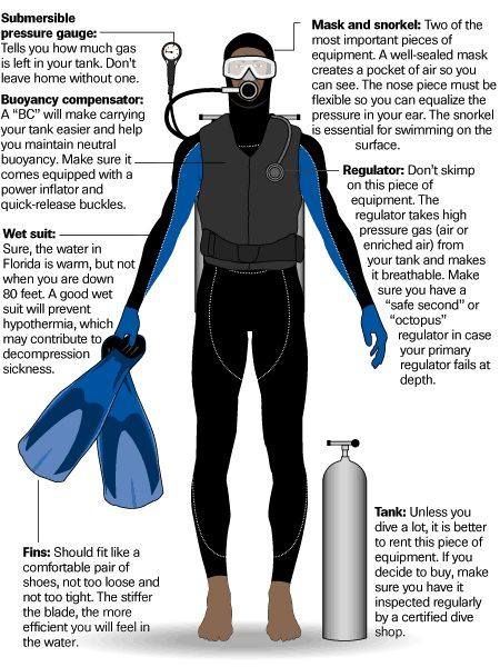 How to Learn Scuba Diving? / Copper Zia On Fuseink