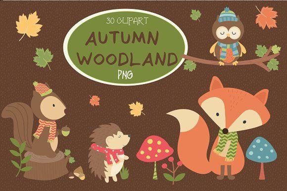 Autumn woodland Clipart by Poppymoondesign on @creativemarket