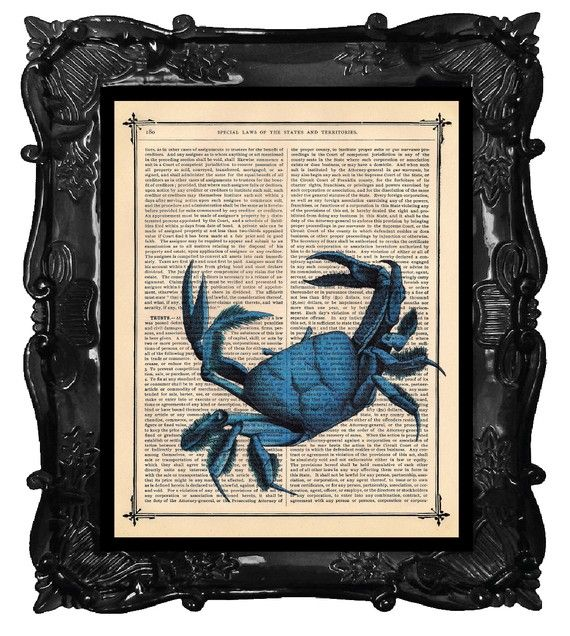 STONE CRAB Blue Mixed Media CRAB Art Print on by BlackBaroque, $10.00