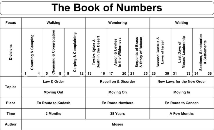 Bible Study: Numbers - Summary of the Book - Genuine ...