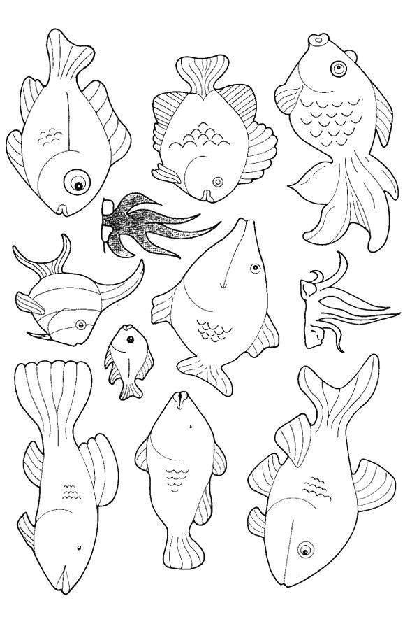 Coloring Book Pages Of Fish : Best 25 fish template ideas on pinterest free fishing games
