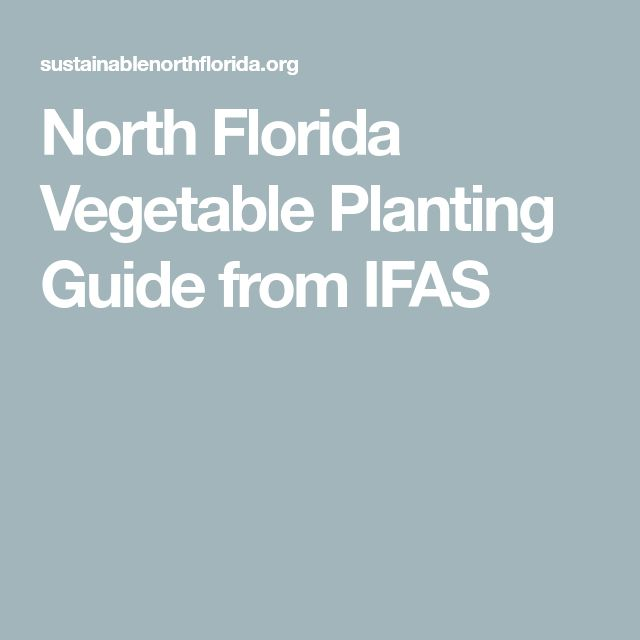 North Florida Vegetable Planting Guide from IFAS