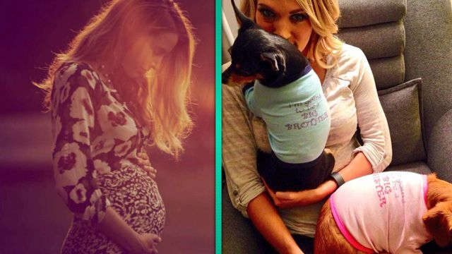 They're Having a Baby! 6 Best Pregnancy Announcements of 2014