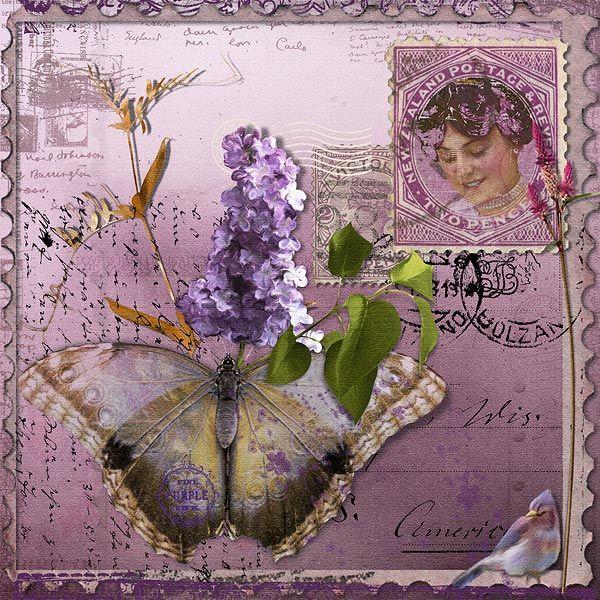 lavender loveliness...