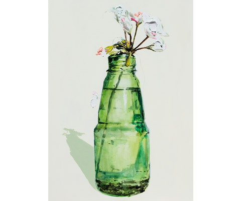 Geranium Study (Green)  Dane Lovett