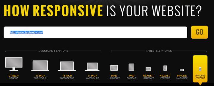 ReSPONSIVE dESIgn checker -www.tautweb.com