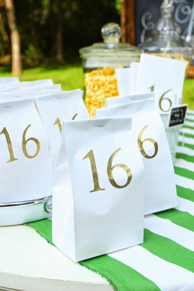 Sweet 16 Outdoor Movie Party: Sources and How-To's | Less Than Perfect Life of Bliss | home, diy, travel, parties, family, faith,