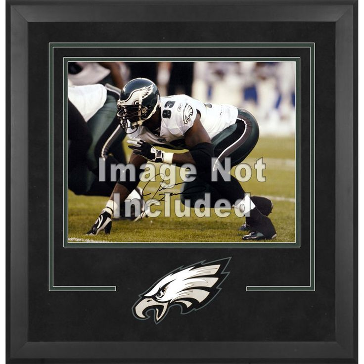 "Philadelphia Eagles Fanatics Authentic 16"" x 20"" Deluxe Horizontal Photograph Frame with Team Logo"