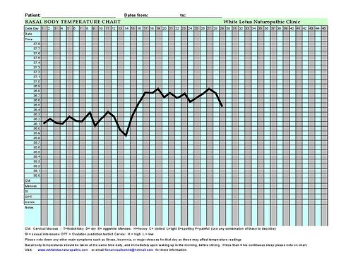 Basal Body Temperature (BBT) Chart | A guide for women on how to read it | White Lotus Naturopathic Clinic and Integrative Health