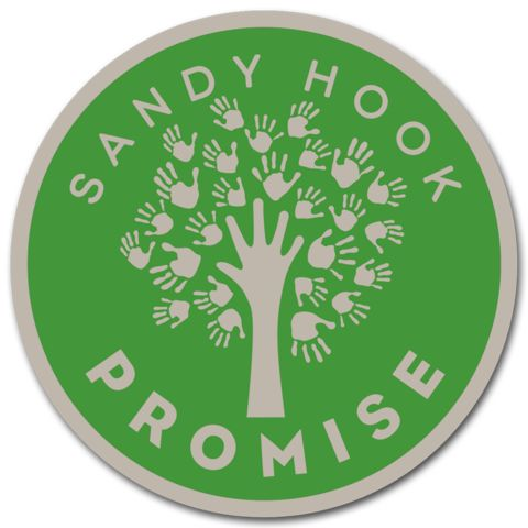 Keep your Promise close to your heart with this nickel colored lapel pin featuring the Sandy Hook Promise logo.