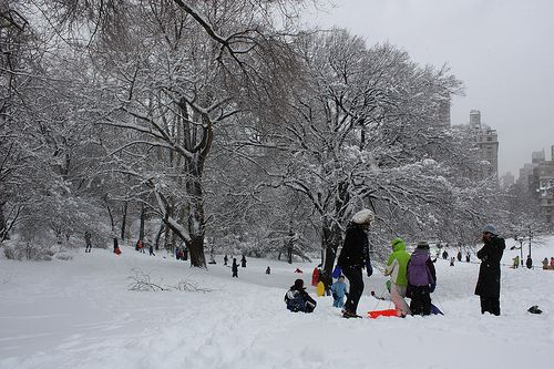 Colors in Central Park