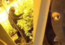 3 Domme jongens uit Rotterdam filmen de locatie van hun WIETHOK om STOER te doen…