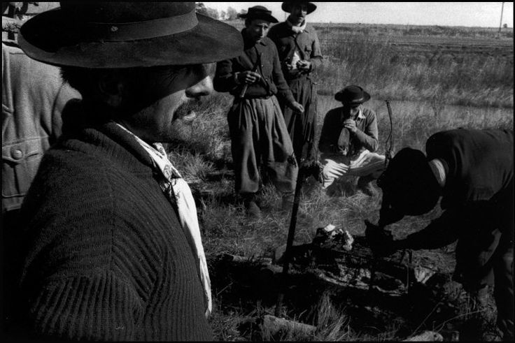 René Burri, ARGENTINA. 1958. Along the road to Mar del Plata, a group of Gauchos rest on the roadside for their traditional ASADOR (meal). The sheep are carried as live food provisions on a cart and slaughtered when necessary. After the meal (roasted sheep, bread and wine) the gauchos then mount their horses again and continue their long voyage north with hundreds of head of cattle along a never ending road.
