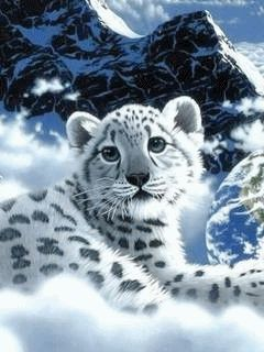 Download Animated 240x320 171 Snow Tiger 187 Cell Phone