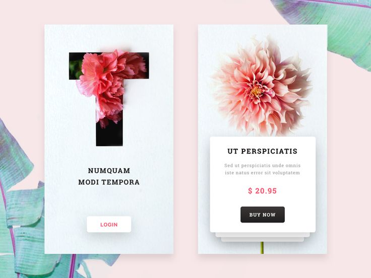 Flower Shop mobile app by Messaki