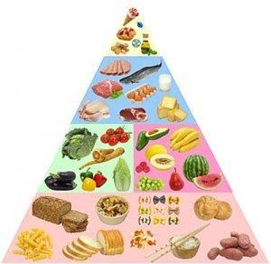 gida-gunu-besin-piramidi.jpg
