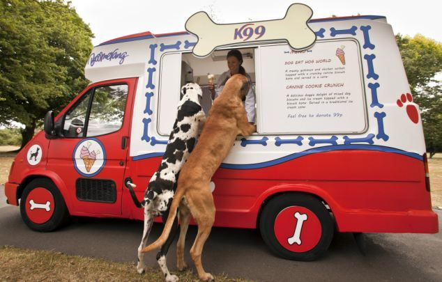 K99, an ice cream truck for dogs, will hit the parks of London. A fundraising event that will serve up two choices of ice cream flavors for your pampered pooch.