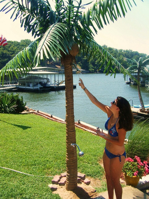 Great Install Our Artificial Palm Tree Pool Shower To Help Encourage Guests To  Shower Off Before Entering