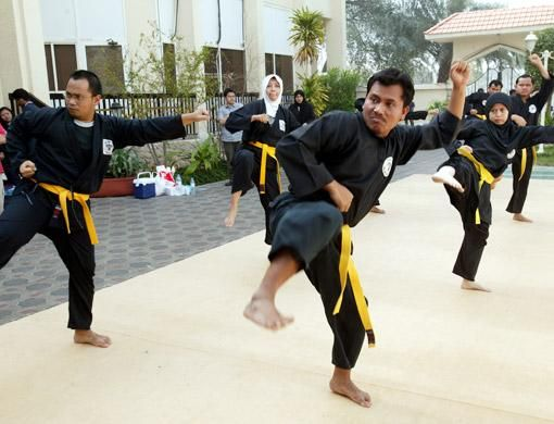 Fighting arts in the Indonesian and Malay Archipelago arose out of hunting methods and military training by the region's native inhabitants. The descendants of former headhunters still perform ancient wardances which are considered the precursor of the freestyle form in silat.