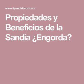 Propiedades y Beneficios de la Sandia ¿Engorda?