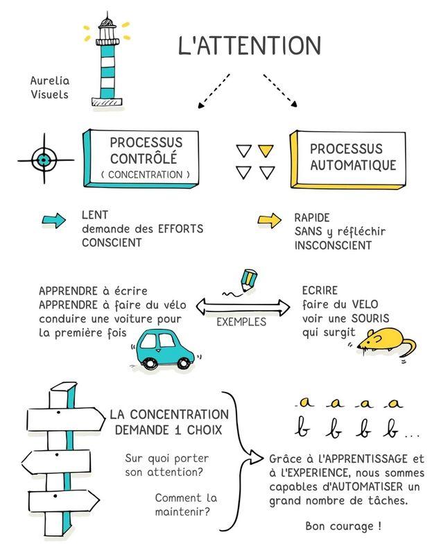 Sketchnote sur les 2 types d'attention: processus contrôlé et processus automatique #AureliaVisuels #attention #concentration  #sketchnote