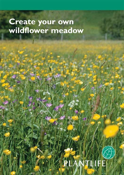 A quick introduction to creating your own meadow (4 pages).