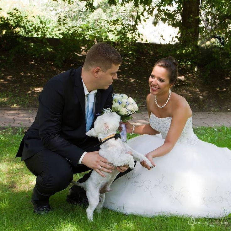 Tedd még különlegesebbé a Nagy Napot, jótékonykodj az esküvődön! - Megmutatjuk HOGYAN » Jótékonyság az esküvőn > Menyegzolap.hu