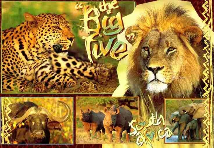 The famous Big Five