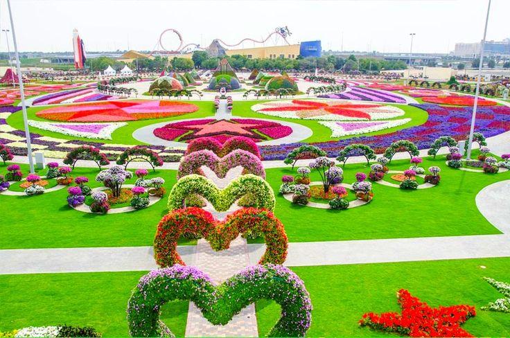 Dubai Miracle Garden ✿♥‿♥✿