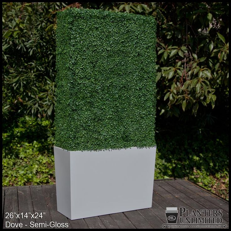 Artificial boxwood privet hedge in a tapered grey planter ...