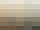 Sherwin Williams Paints - Sherwin Williams Colors - Sherwin Williams Paint, House Paint Colors - Fundamentally Neutral Color Paints - Paint Chart, Chip, Sample, Swatch, Palette, Color Charts - Exterior, Interior, Wall