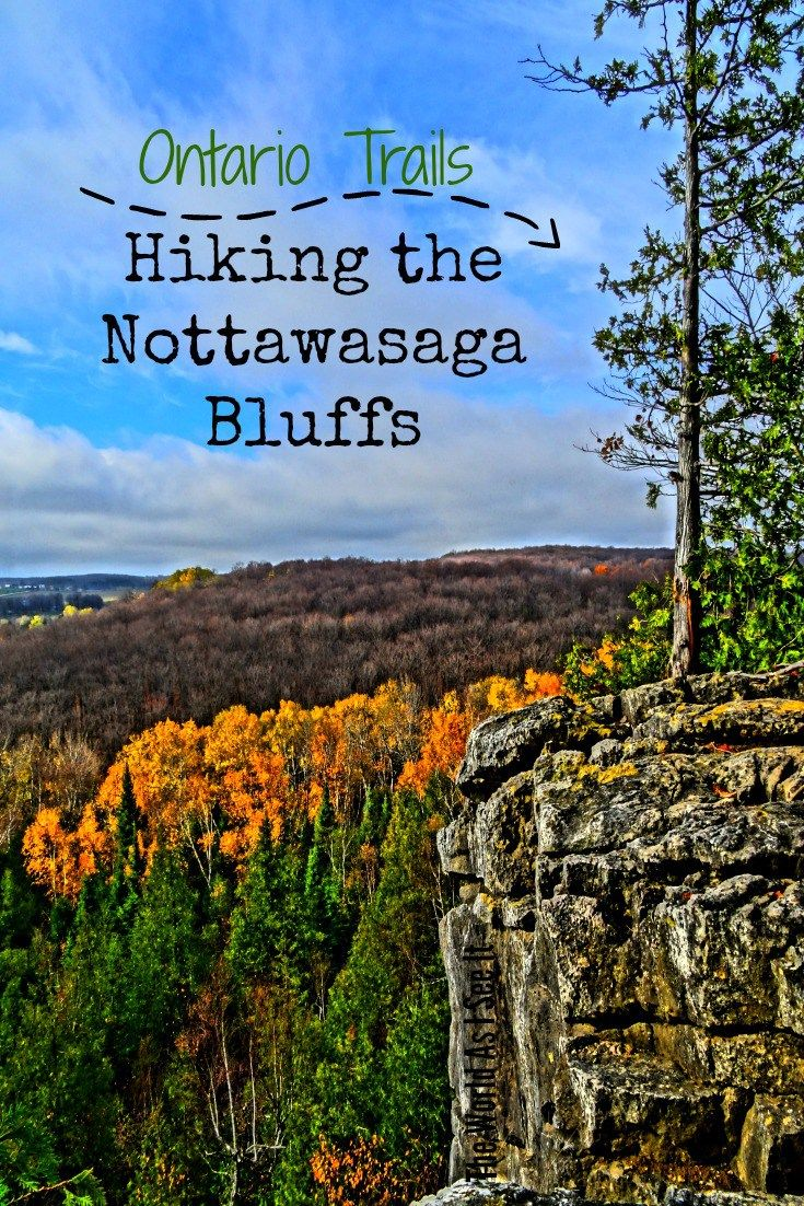 Hiking Nottawasaga Bluffs in Ontario, Canada