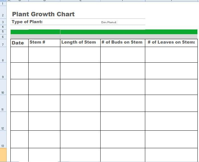 Plant Growth Chart Monitoring Template · Word TemplatesChore ...  Chore Chart Template Word