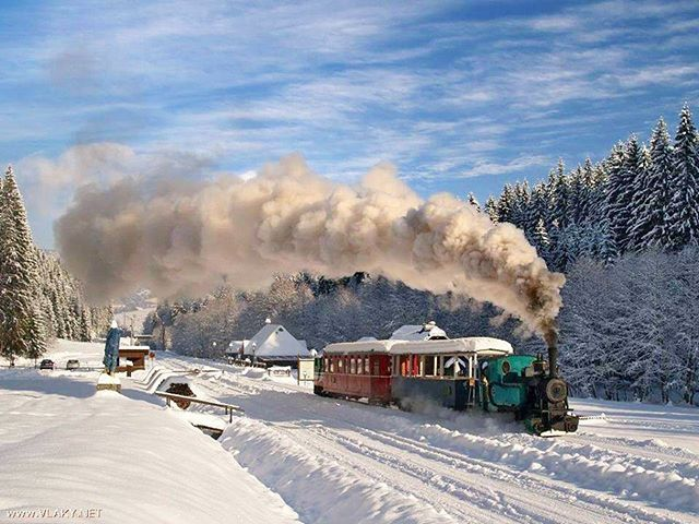Ide ide vláčik, ide ide vlak 🚂 Awesome photo by Evička Eva #ThisIsSlovakia  Send us your photos and videos so we can share them 📧Email:  thisisslovakia@hotmail.com 😃👍Follow us on Facebook for more, link in BIO 🇸🇰