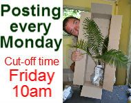 Plants postage every Monday. Cut-off time Friday's 10am!