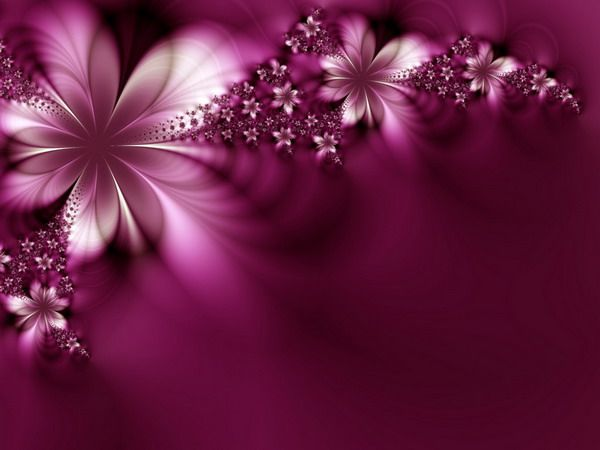 flower wallpaper for kindle fire - photo #31
