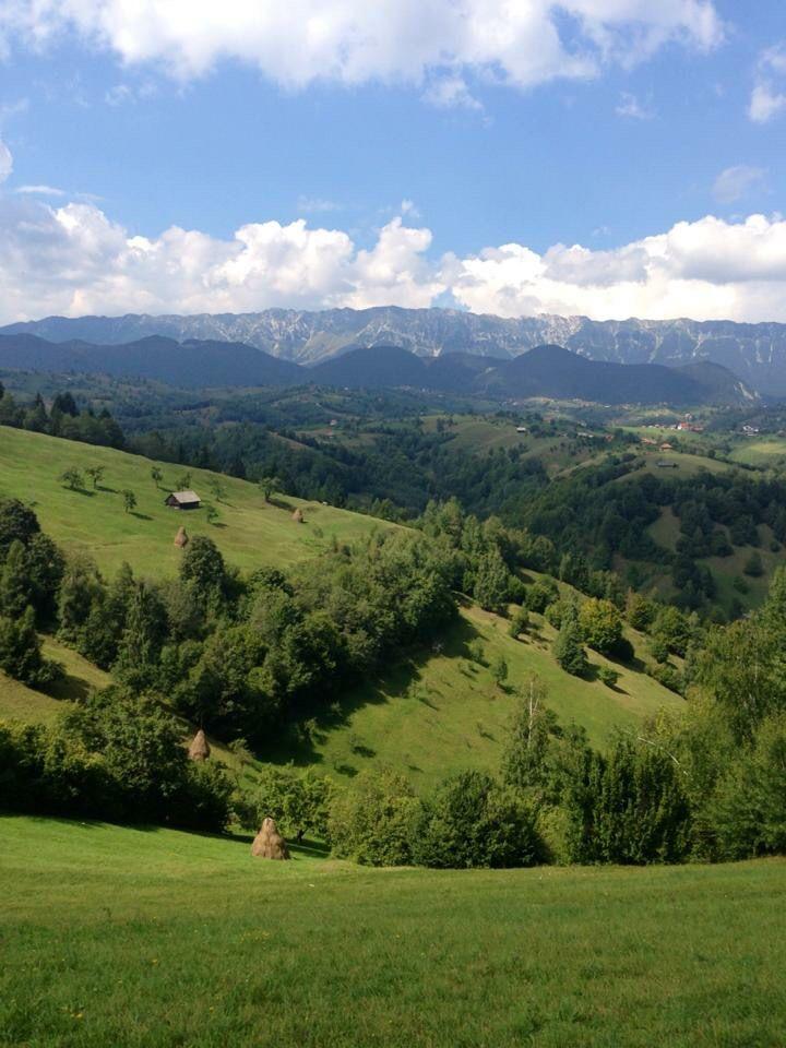 Moeciu, Romania