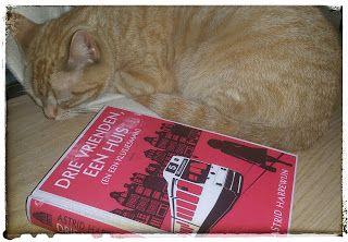 Drie vrienden, een huis (en een klusjesman) - Astrid Harrewijn #boekperweek 45/52