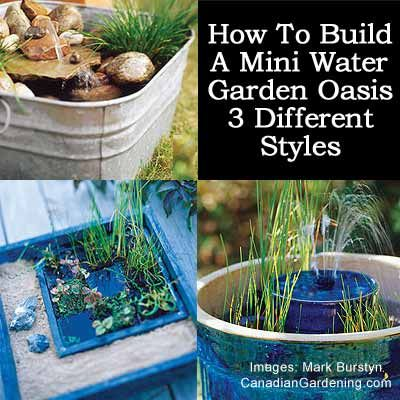 How to build a mini water garden oasis in 3 different styles garden projects pinterest - Vertical gardens miniature oases ...