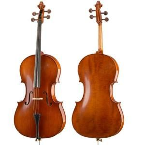 Cello outfit Hofner AS-185-C