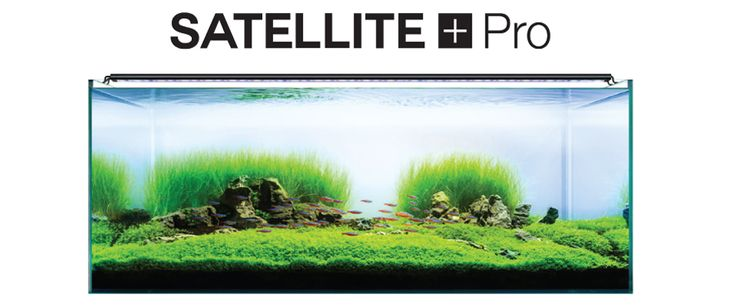 Learn about Satellite LED+ PRO; these lights offer top quality, safe fish tank lighting. Get more info on our fish aquarium LED lights at Current-USA.