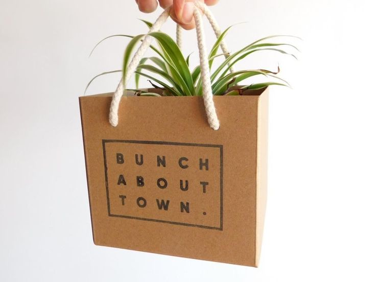 "22 Likes, 3 Comments - Bunch About Town (@bunchabouttown) on Instagram: ""One of our balls heading off in its box to its new home 🏡 So very cute! Pre order yours by sending…"""